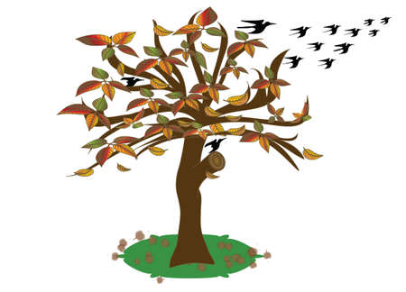 Seasonal autumn deciduous tree with the departure of the birds to a warmer climate.Vector and jpg. Vektorgrafik