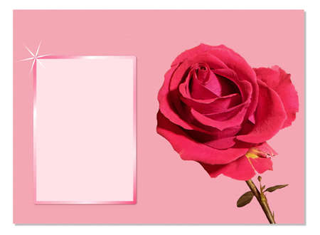 Postcard with roses and empty frame for love your text.