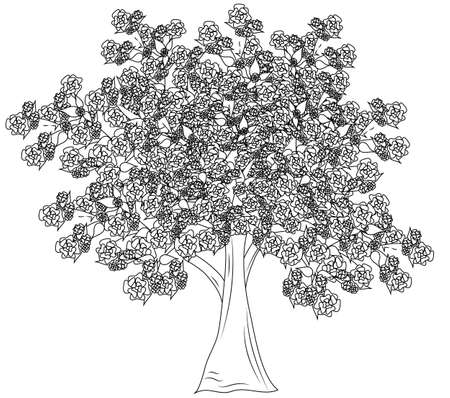 Large leafy flowering tree in vector format