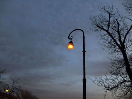 Electric lighting in the park late at night photo