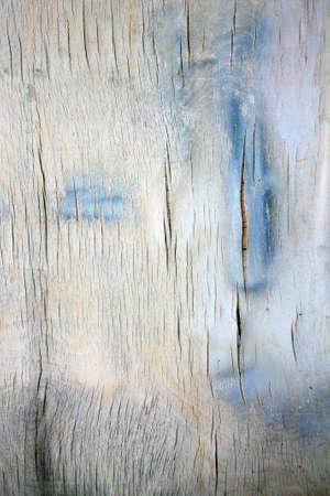 bloat: Humid plywood