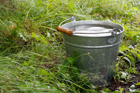 Bucket with rainwater in grass