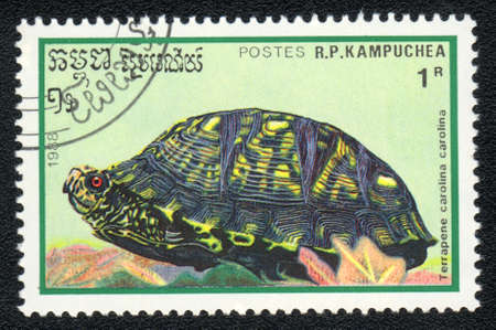 postmail: KAMPUCHEA - CIRCA 1988: A stamp printed in Kampuchea and shows  Eastern Box Turtle - Terrapene carolina carolina, circa 1988 Stock Photo