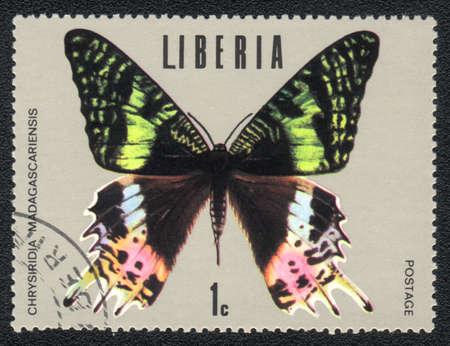 liberia: LIBERIA : A Stamp printed in LIBERIA shows image of a butterfly Chrysiridia riphaeus (Uraniidae)