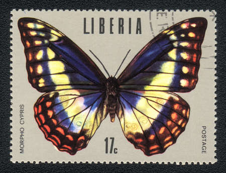 liberia: LIBERIA : A Stamp printed in LIBERIA shows image of a Neotropical butterfly - Nymphalidae (Morpho cypris)
