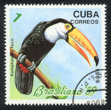 CUBA - CIRCA 1989: A Stamp printed in CUBA shows image of a bird Toco Toucan (ramphastos toco) ,  circa 1989 photo