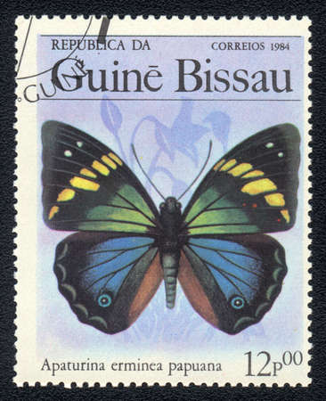 GUINEA-BISSAU - CIRCA 1984: A Stamp printed in GUINEA-BISSAU shows image of a  butterfly apaturina erminea papuana, circa 1984 Stock Photo - 10088676