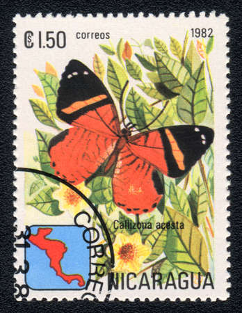 NICARAGUA - CIRCA 1982: A Stamp printed in NICARAGUA shows image of a  butterfly Callizona acesta, circa 1982  photo
