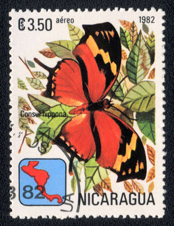NICARAGUA - CIRCA 1982: A Stamp printed in NICARAGUA shows image of a  butterfly Consul hippona, circa 1982  photo