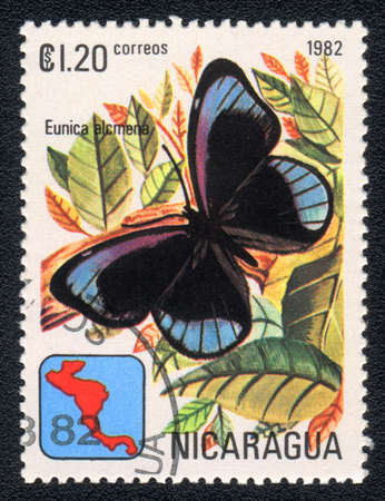 NICARAGUA - CIRCA 1982: A Stamp printed in NICARAGUA shows image of a  butterfly Dark Purplewing (eunica alcmena), circa 1982  photo