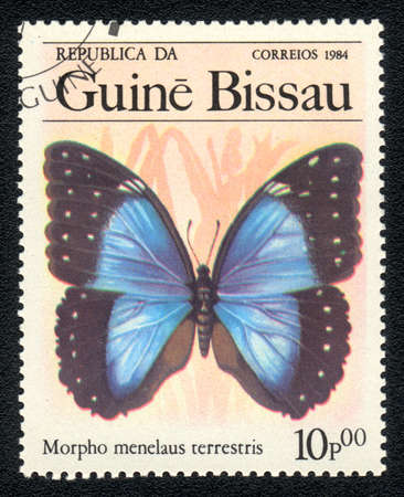 GUINEA-BISSAU - CIRCA 1984: A Stamp printed in GUINEA-BISSAU shows image of a  Morpho menelaus terrestris, butterfly morpho menelaus terrestris, circa 1984  Stock Photo - 10088670