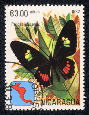 NICARAGUA - CIRCA 1982: A Stamp printed in NICARAGUA shows image of a  butterfly Parides iphidamas, circa 1982  Stock Photo - 10088605