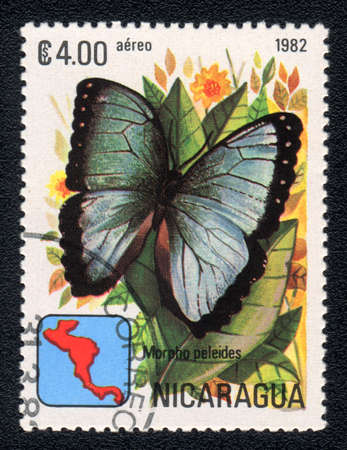 NICARAGUA - CIRCA 1982: A Stamp printed in NICARAGUA shows image of a  butterfly Peleides Blue Morpho (Morpho peleides), circa 1982  Stock Photo - 10088645