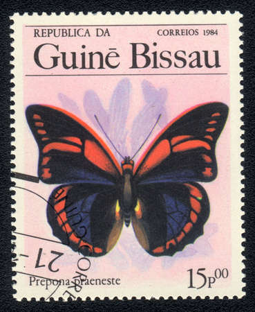 GUINEA-BISSAU - CIRCA 1984: A Stamp printed in GUINEA-BISSAU shows image of a  butterfly prepona praeneste, circa 1984 Stock Photo - 10088649