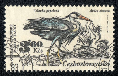 CZECHOSLOVAKIA - CIRCA 1983: A Stamp printed in CZECHOSLOVAKIA shows image of a ardea cinerea, from the series Flora and fauna, circa 1983 photo