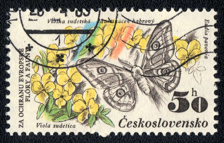 CZECHOSLOVAKIA - CIRCA 1983: A Stamp printed in CZECHOSLOVAKIA shows image of a eudia pavonia and viola sudetica, from the series  Stock Photo - 10088642