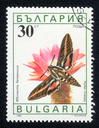 BULGARIA - CIRCA 1990: A Stamp printed in BULGARIA and shows image of a  butterfly (hyles lineata) on the red flower, circa 1990  Stock Photo - 10088592
