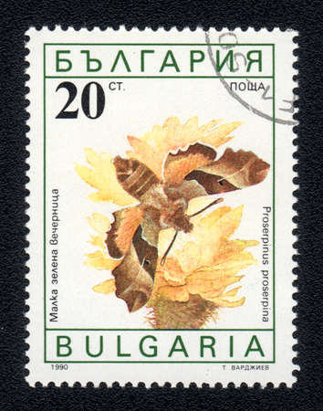BULGARIA - CIRCA 1990: A Stamp printed in BULGARIA and shows image of a  butterfly (proserpinus proserpina) on the red flower, circa 1990  Stock Photo - 10088598