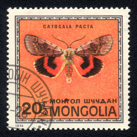 catocala: MONGOLIA -  CIRCA 1974: A Stamp printed in MONGOLIA shows image of a Catocala pacta  butterfly, circa 1974