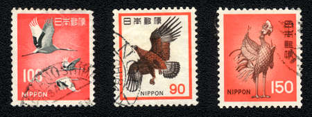 JAPAN - CIRCA 1975: A stamp printed in JAPAN and shows image of a birds, circa 1975 photo