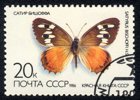 philatelic: USSR - CIRCA 1986: A Stamp printed in USSR shows image of a Satyrus bischoffi butterfly, series