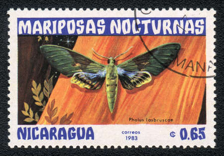 NICARAGUA - CIRCA 1983: A Stamp printed in NICARAGUA shows image of a pholus lasbruscae butterfly, circa 1983  photo
