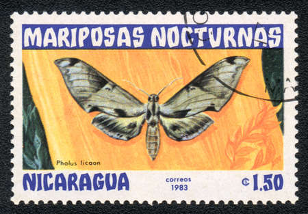 NICARAGUA - CIRCA 1983: A Stamp printed in NICARAGUA shows image of a pholus licaon butterfly, circa 1983  photo