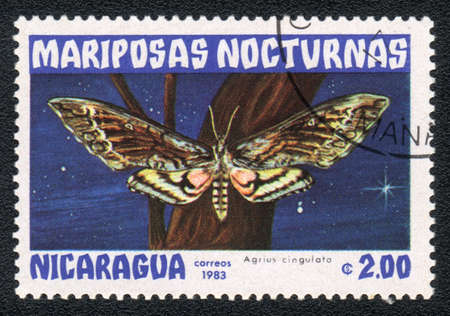 NICARAGUA - CIRCA 1983: A Stamp printed in NICARAGUA shows image of a agrius cingulata butterfly, circa 1983 Stock Photo - 10289571