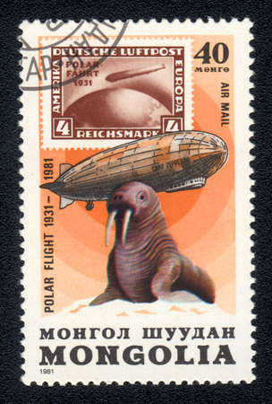 MONGOLIA - CIRCA 1981: A Stamp printed in MONGOLIA shows image of a walrus,  from the series Polar flight 1931-1981, circa 1981  photo