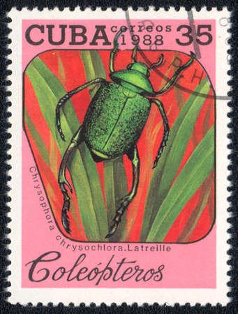 CUBA - CIRCA 1988: A Stamp printed in CUBA shows image of a (Chrysophora chrysochlora. Latreille) beetle, from series - entomofauna, circa 1988    Stock Photo - 10291664