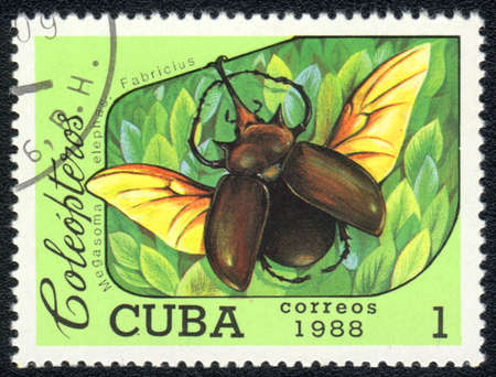 CUBA - CIRCA 1988: A Stamp printed in CUBA shows image of a (Megasoma elephas. Fabricius) beetle, from series, circa 1988 Stock Photo - 10291659