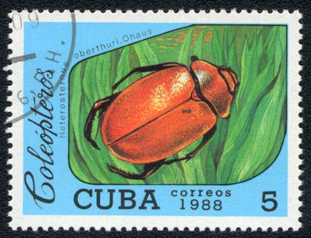 CUBA - CIRCA 1988: A Stamp printed in CUBA shows image of a (Heterosternus oberthuri, Ohaus) beetle, from series, circa 1988 Stock Photo - 10291661