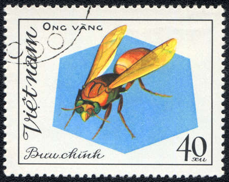 Vietnam - CIRCA 1982: A stamp printed in Vietnam shows Aculeata, circa 1982 photo