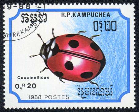 KAMPUCHEA - CIRCA 1988: A stamp printed in Kampuchea shows a coccinellidae, circa 1988 Stock Photo - 10312451