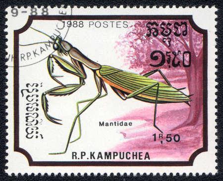 KAMPUCHEA - CIRCA 1988: A stamp printed in Kampuchea shows a mantidae, circa 1988 Stock Photo - 10312453