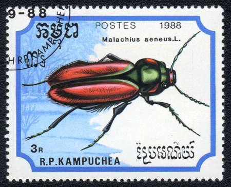 KAMPUCHEA - CIRCA 1988: A stamp printed in Kampuchea shows a Malachius aeneus, circa 1988 Stock Photo - 10312454