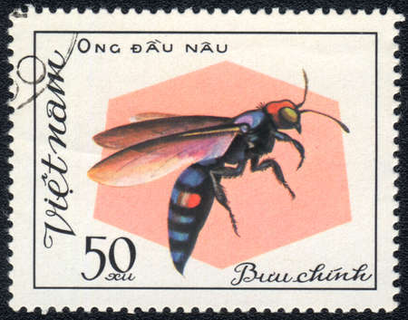 Vietnam - CIRCA 1982: A stamp printed in Vietnam shows Aculeata, circa 1982 Stock Photo - 10311763
