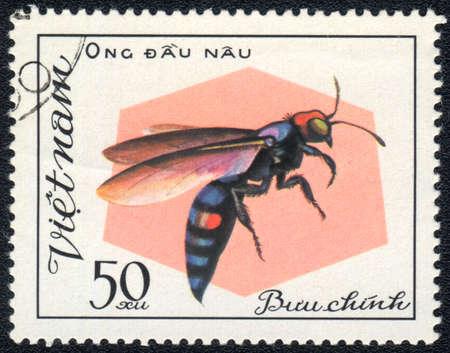 Vietnam - CIRCA 1982: A stamp printed in Vietnam shows Aculeata, circa 1982 Stock Photo - 10311763
