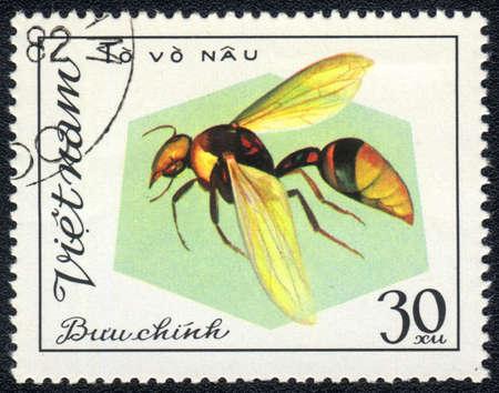 Vietnam - CIRCA 1982: A stamp printed in Vietnam shows Aculeata, circa 1982 photo