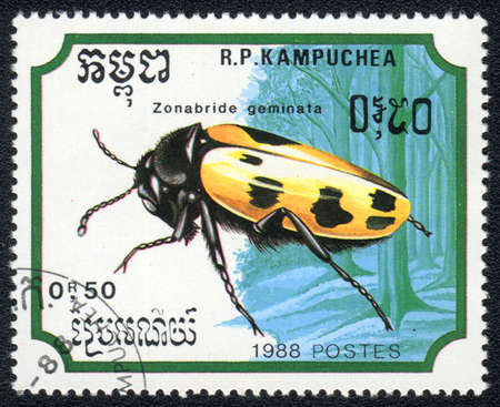 perforated stamp: KAMPUCHEA - CIRCA 1988: A stamp printed in Kampuchea shows a Zonabride geminata, circa 1988 Stock Photo