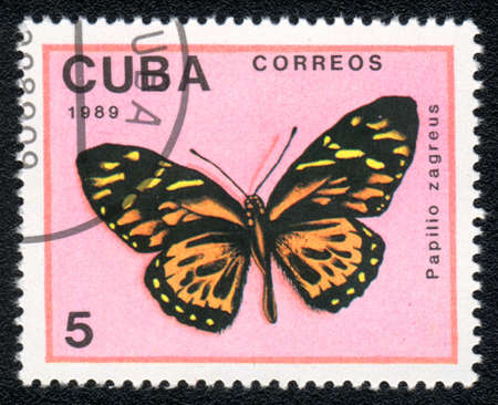 cuba butterfly: CUBA - CIRCA 1989: A Stamp printed in CUBA shows image of a papilio zagreus butterfly, circa 1989  Stock Photo