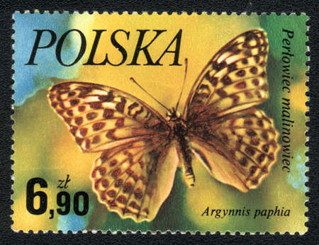 Poland - CIRCA 1980: A Stamp printed in Poland shows image of a butterfly - Argynnis paphia, circa 1980  Stock Photo - 10435540