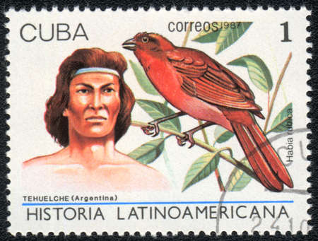 CUBA - CIRCA 1987: A Stamp printed in CUBA shows image of a  tehuelche (Argentina) and habia rubica, from series Historia Latinoavericana, circa 1987 photo