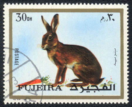 philatelic: Fujairah - CIRCA 1973: A stamp printed in  Fujairah and shows a Hare , circa 1973