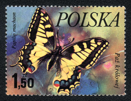 perforated stamp: Poland - CIRCA 1980: A Stamp printed in Poland shows image of a butterfly - Papilio machaon, circa 1980