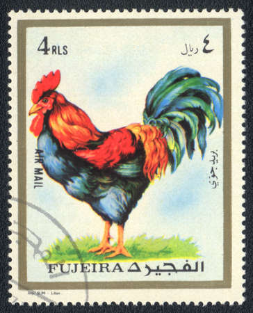 perforated stamp: Fujairah - CIRCA 1973: A stamp printed in  Fujairah and shows a Rooster , circa 1973