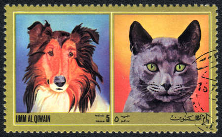 Umm al Qiwain - CIRCA 1971: A stamp printed in Umm al Qiwain shows cat and dog from series: Different breeds of dogs and cats, circa 1971 Stock Photo - 10516635