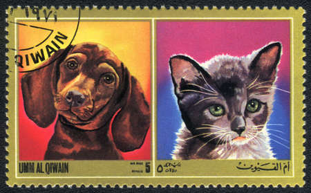 Umm al Qiwain - CIRCA 1971: A stamp printed in Umm al Qiwain shows cat and dog from series: Different breeds of dogs and cats, circa 1971 Stock Photo - 10516634