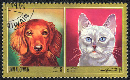 umm: Umm al Qiwain - CIRCA 1971: A stamp printed in Umm al Qiwain shows cat and dog from series: Different breeds of dogs and cats, circa 1971