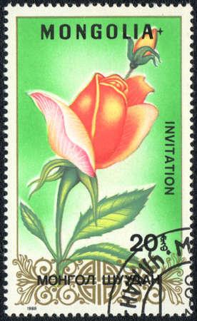 MONGOLIA - CIRCA 1988: A stamp printed in MONGOLIA shows Invitation rose ,circa 1988 Stock Photo - 10563507